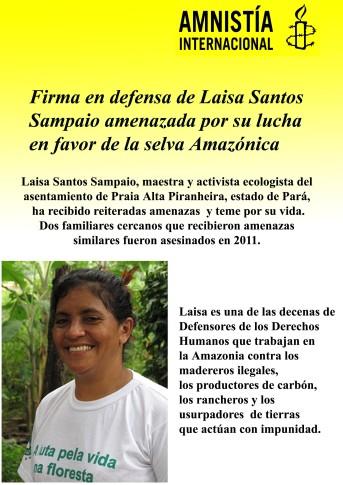 Folleto informativo sobre el caso de la activista brasileña