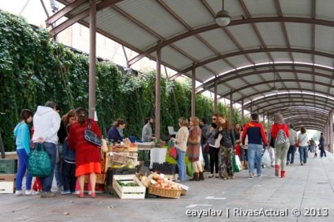 Un aspecto del mercadillo, ayer domingo (Foto: Enrique Ayala)
