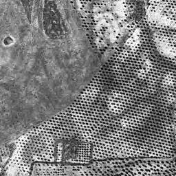 Mapa topográfico de la zona que ocuparía el campo de golf. El espacio moteado corresponde al olivar en peligro (Enlace suministrado por Colectivo Ecologista Arba)