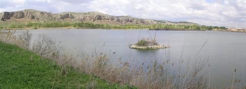 Vista de los Cortados de Rivas (Foto: Wikipedia)