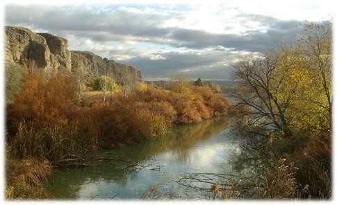 Una vista de cortados del Parque Sureste, próximos a Rivas (Foto Biodiverciudad)
