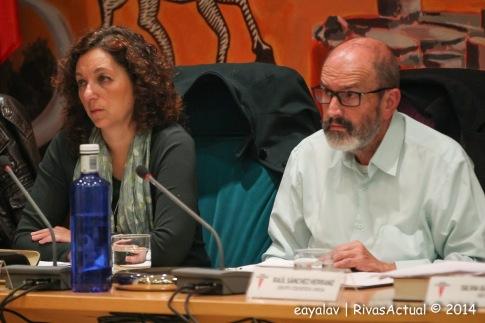 Raúl Sánchez, concejal de Deportes, en un pleno municipal reciente (Foto: Enrique Ayala)