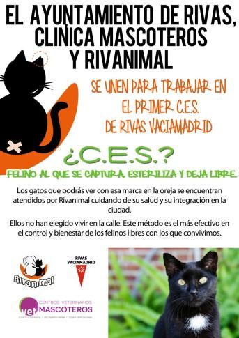 Cartel de la iniciativa CES para el control de gatos callejeros.  (Foto: cortesía protectora Rivanimal).